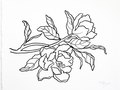 Floral Ink line drawing on white rag paper n.1 - 11h x 14w in.
